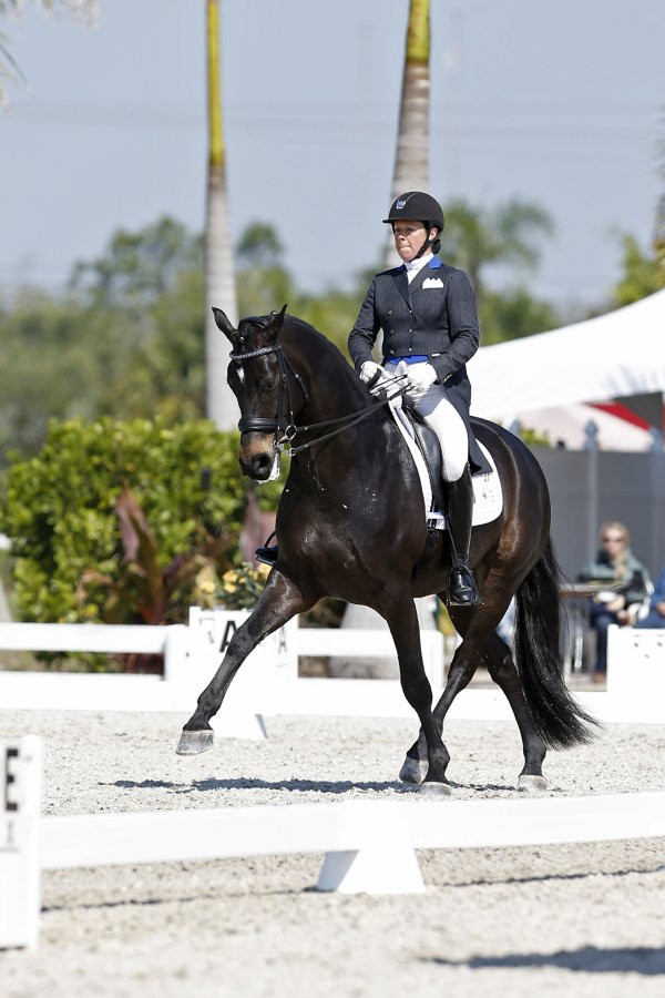 © Susan J. Stickle: Kimberly Herslow and Rosmarin at the Palm Beach Dressage Derby CDI-W (Photo by Susan J. Stickle)